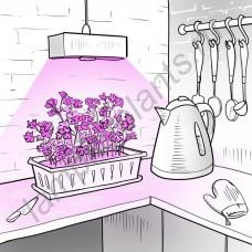 """Лампа для рассады и досветки домашних растений светодиодная полного спектра """"Алькес"""" 20Вт цокольная (Е27/Е14/Е40/GU10)"""